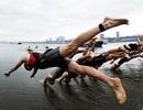 Thể thao Việt Nam phải đầu tư lại cho SEA Games 28?