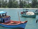 Thiết lập vườn ươm san hô trên vùng biển Phú Quốc