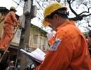 Kiểm toán để đánh giá về tính trung thực, hợp lý của giá điện
