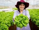 Cô gái Tây Nguyên nuôi ước mơ giải cứu nông sản ế