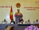 Trình Quốc hội cho thí điểm cấp thị thực điện tử