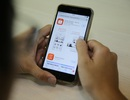 Nhiều sàn thương mại điện tử mới tấn công thị trường Việt Nam