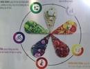 Thực phẩm chức năng bị thổi phồng cả chất lượng lẫn giá thành