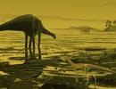 Phát hiện hàng trăm dấu chân khủng long thời cổ đại ở Scotland