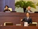 Đại biểu Quốc hội: Có hay không lợi ích nhóm tại dự án thép Cà Ná?