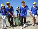Dàn sao Việt cùng 1000 người dân xuống biển nhặt rác