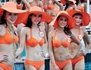 Những vụ phát giác gây ồn ào ở các cuộc thi Hoa hậu của Việt Nam