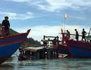 Cứu sống 3 ngư dân bị chìm thuyền trên biển
