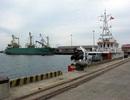 Hơn 100 tấn bùn trên tàu Trung Quốc cập cảng Hà Tĩnh