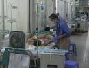 Sốt xuất huyết: Mất tiền triệu vì một nốt muỗi đốt