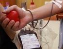 Những người cả đời phải sống nhờ truyền máu