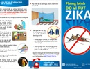 Phát hiện hai ca nhiễm vi rút Zika mới, 1 trường hợp đang mang thai