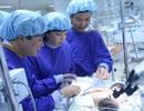 Chưa thể có phương án phẫu thuật tách rời cặp song sinh dính liền