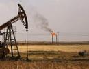IS đánh cắp 50 triệu thùng dầu của Syria