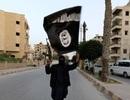 """Tài liệu tiết lộ cách thức quản lý """"chiến lợi phẩm"""" của IS"""