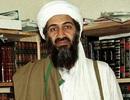Tiết lộ di chúc của bin Laden về khối tài sản 29 triệu USD