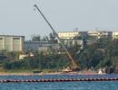 Nhật Bản đình chỉ thi công căn cứ quân sự của Mỹ ở Okinawa