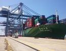 """Tàu container """"khủng"""" cập cảng Cái Mép"""