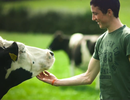 """Ireland - """"Thiên đường"""" của những giọt sữa"""