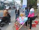 Hoa tươi dịp 8/3 ở Đà Lạt tăng gấp 2-3 lần ngày thường