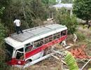 Xe khách lao xuống ruộng, 10 người hoảng loạn kêu cứu