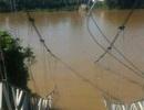 Sập cầu treo, 4 người rơi xuống sông Đồng Nai