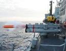 Mỹ-Nhật-Hàn tập trận hải quân rầm rộ