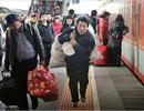 Trung Quốc bắt đầu cuộc di cư lớn nhất trong năm