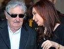 """Tổng thống Uruguay xin lỗi vì """"nói hớ"""""""