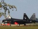 Trung Quốc nhăm nhe trang bị chiến đấu cơ tàng hình cho tàu sân bay