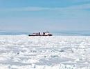 Tàu phá băng Trung Quốc lại mắc kẹt sau khi giải cứu tàu Nga ở Nam Cực