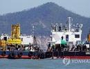 """Hàn Quốc sử dụng """"chuông lặn"""" để tìm kiếm các thi thể trong phà chìm"""