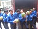Đoàn viên, thanh niên hồ hởi tiếp sức cho nông dân trồng dưa