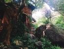Ghé thăm khu vườn ký ức giữa núi rừng Đà Nẵng