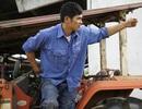 Cử nhân đại học về quê nuôi bò, thực hiện ước mơ tỷ phú