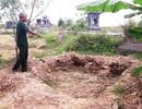 Làm rõ việc chôn trộm hơn 340 tiểu sành chứa hài cốt