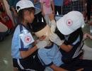 Học sinh tốt nghiệp THPT phải thành thạo sơ cấp cứu