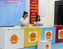 TPHCM: Sinh viên mong muốn các đại biểu trúng cử tận tụy với công việc, vì nhân dân