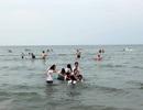 Kết quả quan trắc khẳng định biển Cửa Lò an toàn