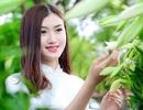 Hoa khôi Đại học Lao động xã hội dịu dàng bên hoa loa kèn