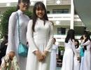 Nữ sinh Bình Định là thủ khoa khối D toàn quốc với 28,25 điểm