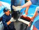 Trúng đậm cá ngừ đại dương, ngư dân đón Tết trên biển
