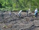 Tranh chấp đất rừng giáp ranh 2 tỉnh: Kiên quyết nhổ bỏ cây trồng trên diện tích lấn chiếm