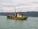 14 ngư dân cầu cứu khẩn cấp ngoài khơi có gió cấp 7