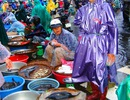 Phú Yên: Chợ chạy lũ, giá cả tăng nhưng không có hàng để bán