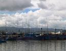 Đề nghị cho 31 tàu cá Bình Định tránh bão tại Philippines và Indonesia