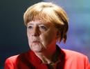Phát hiện đầu lợn đặt ngoài văn phòng tiếp xúc cử tri của thủ tướng Đức