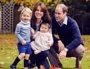 Hạnh phúc viên mãn của Hoàng tử William và Công nương Kate