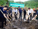 Quảng Bình: Trồng 100 cây hoa Ban trên khu mộ Đại tướng Võ Nguyên Giáp