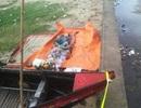 Nhận diện xác chết trôi dạt vào bờ biển